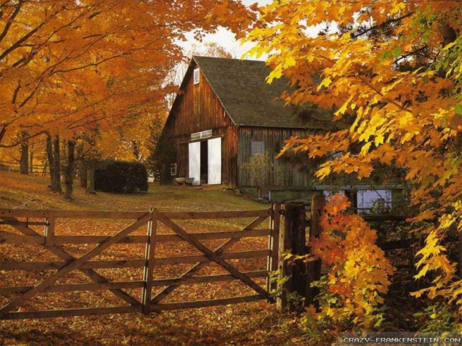 autumn-barn-in-fall-leaves-wallpapers-1024x768